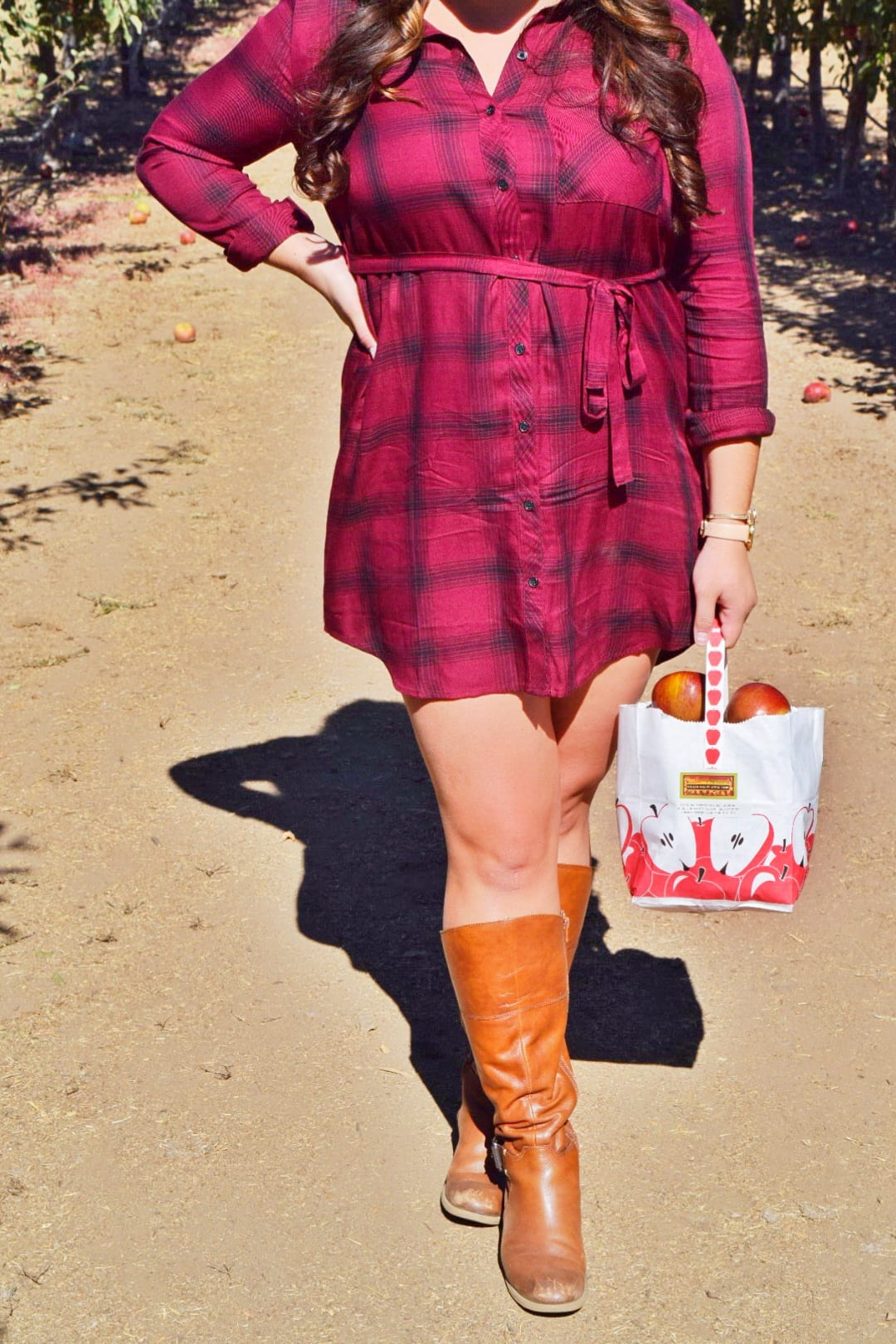 Fall Plaid T-Shirt Dress + Apple Picking