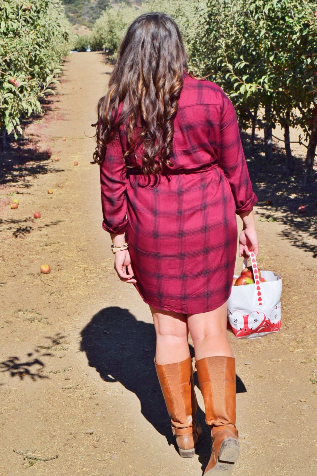 apple picking walking boots flannel | Forever21 plaid shirt dress featured by top San Diego fashion blog, The Brunette & The Beach