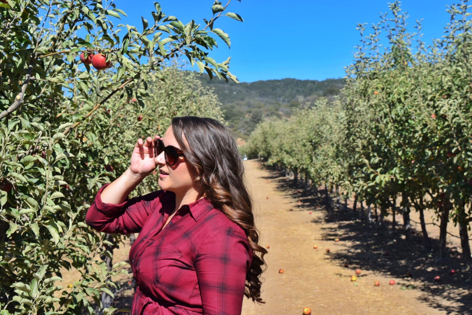 fall sunglasses apple picking flannel | Forever21 plaid shirt dress featured by top San Diego fashion blog, The Brunette & The Beach