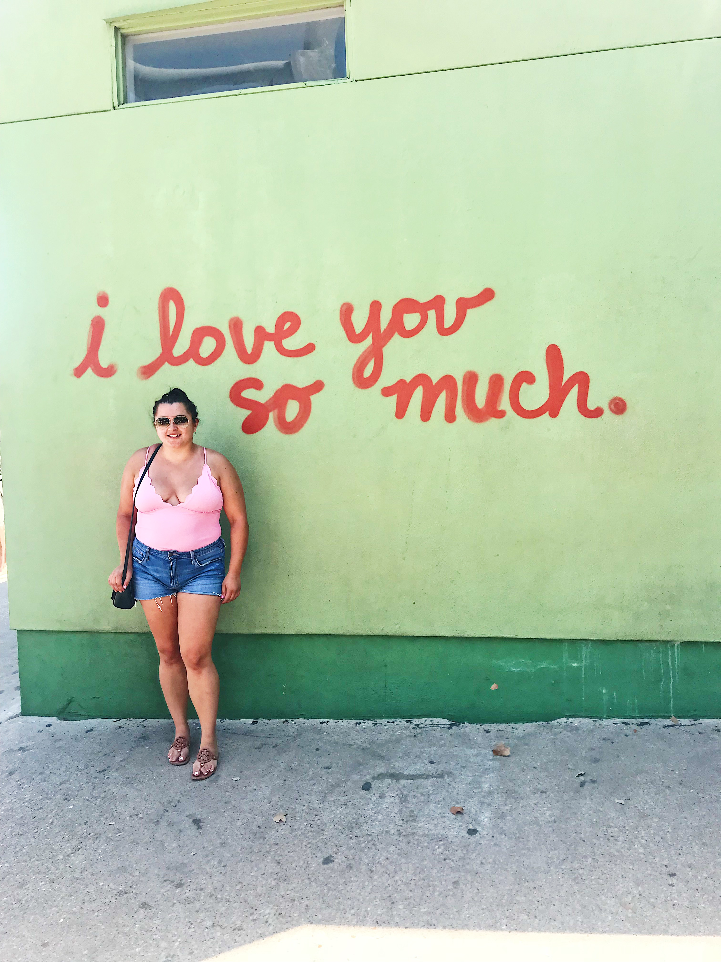The Best Things To Do In Dallas You'll Want to Do featured by popular San Diego travel blogger, The Brunette & The Beach