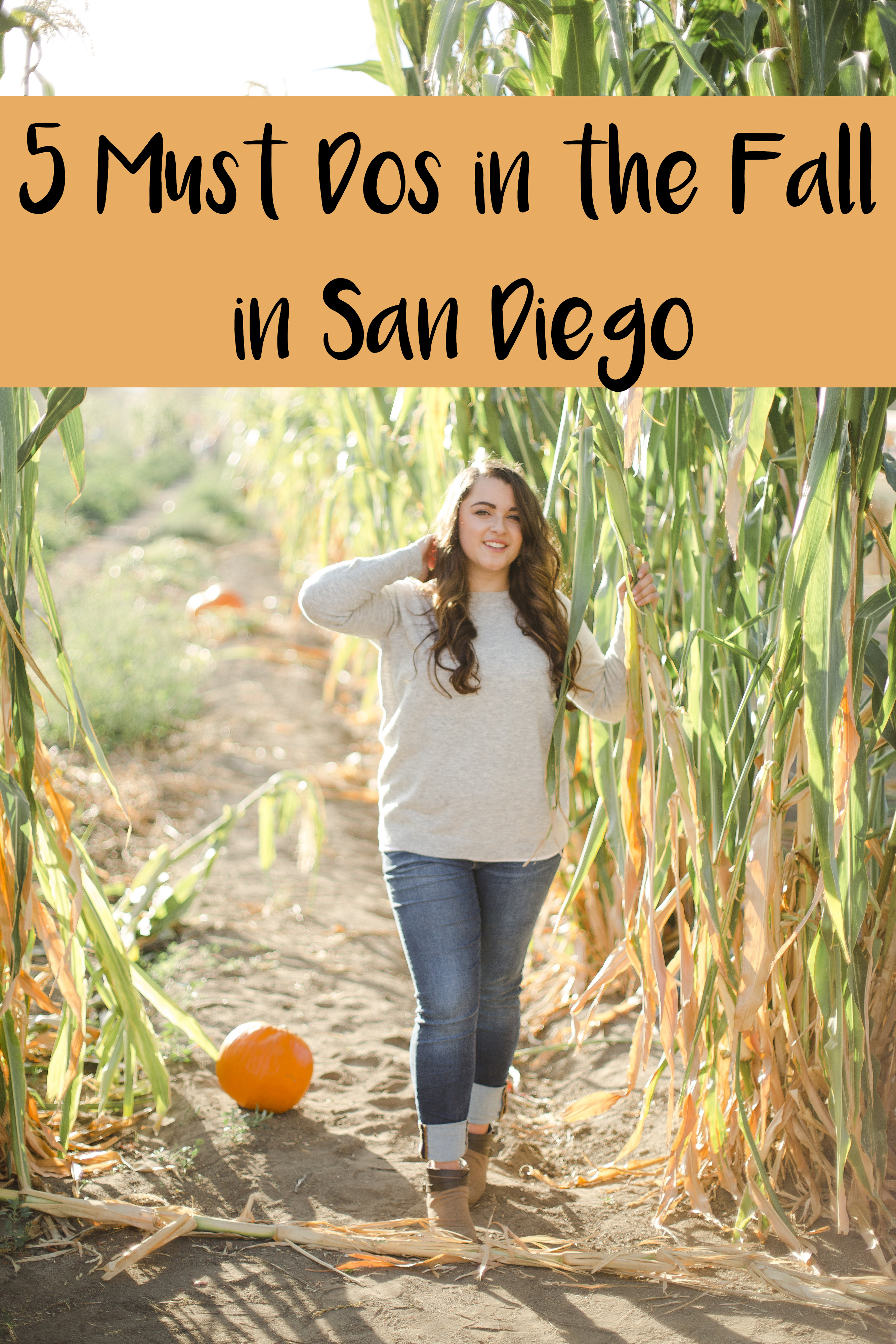 5 Must Dos in the Fall in San Diego featured by top San Diego blog, The Brunette & The Beach: Bates Nut Farm